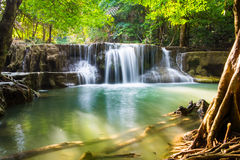 Klares szenisches natürliches des Wasserfalls Stockfotografie