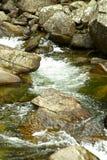 Klares Wasser stockbild