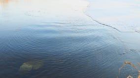 Klares Wasser in einem Fluss fließt langsam im Frühjahr stock footage