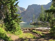Klares Wasser am Nordkaskaden-Nationalpark lizenzfreies stockfoto