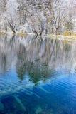 Klares Winter-Wasser Stockfotografie