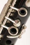 klarinett Royaltyfri Fotografi