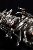 klarinett för bas 001 Arkivbild
