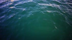 Klart blått hav, bakgrund för vattenseascapeabstrakt begrepp materiel Havsvatten på en bakgrund för solig dag stock video