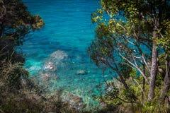 Klart blått vatten av havet och frodig grönska i Abel Tasman National Park Royaltyfri Fotografi