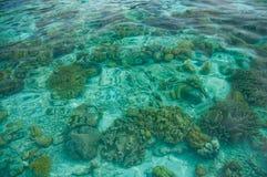 Klart crystal hav med livstidskorall Royaltyfri Bild