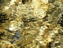 Klart guld- vatten av liten poppelliten vik i Utah Royaltyfri Fotografi