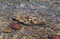 Klart havsvatten, stenar och krabba Arkivfoton