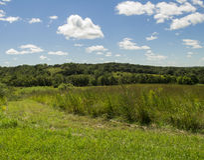 Klart liten vikdjurlivområde - Jasper County, Iowa Royaltyfri Fotografi
