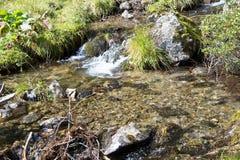 Klart nytt bergvatten över stenar Royaltyfria Foton