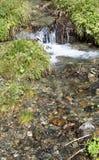 Klart nytt bergvatten över stenar Fotografering för Bildbyråer