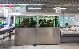 Klart till salu för levande fisk i supermarket Arkivbilder
