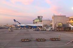 Klart United Airlines flyg royaltyfri fotografi