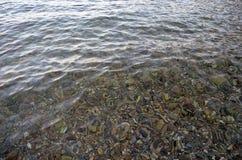 Klart vatten & havet vaggar Arkivbilder