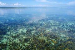 Klart vatten med korallreven nedanför havsyttersida Royaltyfri Foto