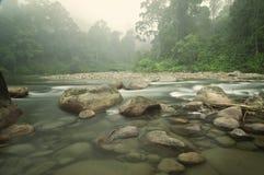 Klart vatten Misty Forest Pebble Stones Rocky River Royaltyfria Bilder