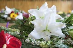 In klaslokaalbloemen die op lijst liggen Royalty-vrije Stock Afbeelding
