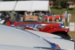 Klassiek Brits sportscar kapdetail royalty-vrije stock afbeeldingen