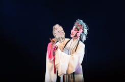 """Klassiek het schoonheid-Pioenpaviljoen--jiangxi opera""""four dromen van linchuan† Royalty-vrije Stock Foto's"""