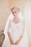 Klassiek portret van de bruid Stock Fotografie