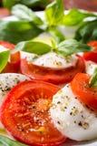 Klassieke caprese salade Royalty-vrije Stock Afbeeldingen