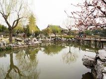 Klassieke Chinese tuin met pagode in de lente Royalty-vrije Stock Foto's