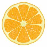 Klassieke citrusvrucht stock foto