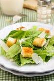 Klassieke salade Caesar Royalty-vrije Stock Foto's