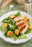 Klassieke salade Caesar Stock Afbeeldingen