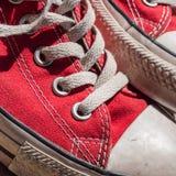Klassieke Tennisschoenen Stock Afbeelding