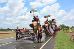 Klassifikations-Parade auf Elephant's-Rückseiten-Festival Stockfotografie