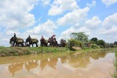 Klassifikations-Parade auf Elephant's-Rückseiten-Festival Lizenzfreie Stockfotos
