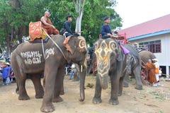 Klassifikations-Parade auf Elephant's-Rückseiten-Festival Stockfoto