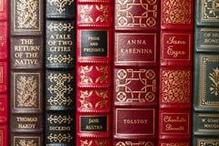 Klassiker der Literatur Lizenzfreie Stockfotos