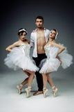 Klassische Balletttänzer Lizenzfreies Stockbild