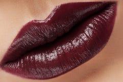 Klassische dunkelrote Lippen der Mode stockbild