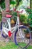 Klassische Fahrräder Lizenzfreies Stockfoto