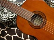 Klassische Gitarren-und Dschungel-Drucke Stockbilder