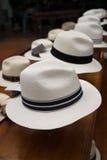 Klassische Panama-Hüte lizenzfreie stockfotografie