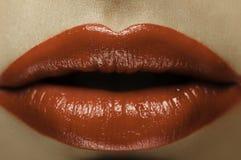 Klassische rote Lippen Lizenzfreie Stockfotografie