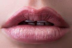 Klassische rote Lippen stockfotos