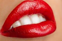 Klassische rote Lippen Stockbild