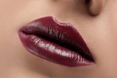 Klassische rote Lippen Stockfotografie
