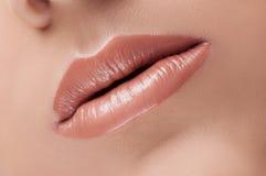 Klassische wahre Lippen der Mode beige lizenzfreie stockfotos