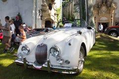 Klassischer Jaguar Lizenzfreies Stockfoto