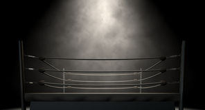 Klassischer Weinlese-Boxring Stockbilder