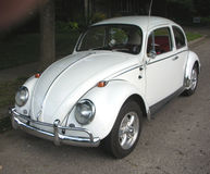 Klassisches weißes Volkswagen Beetle Lizenzfreie Stockfotos