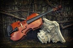 Klassisk fiol - fiol på trähylla med Roman Column Arkivbild