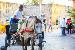 Klassisk hästvagn i Cartagena Royaltyfri Fotografi