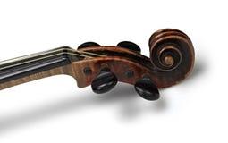 klassisk head fiol Royaltyfri Bild